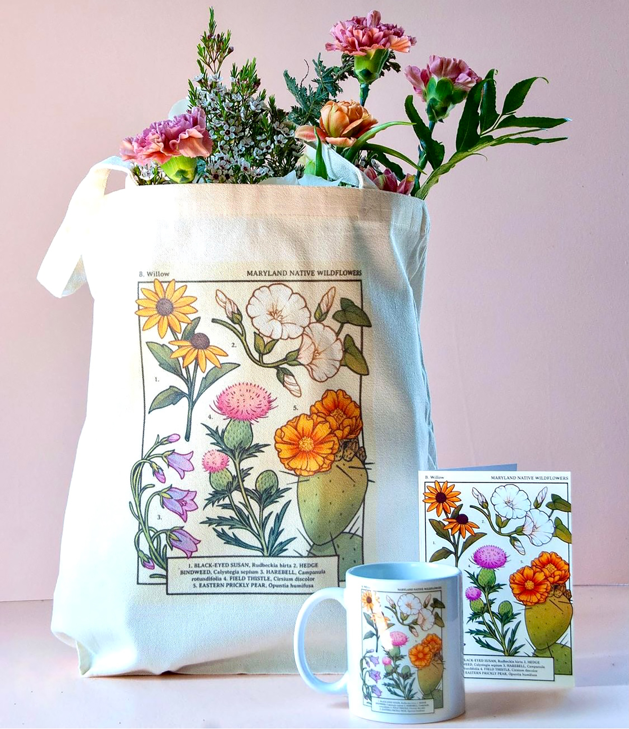 A woman-owned plant store in Baltimore commissioned @loonpflug for her spin on a vintage botanical drawing featuring Maryland native wildflowers. This package, printed by Alpha Graphics, includes tote, mug, and blank card.Photo credit: bwillowbmo..
